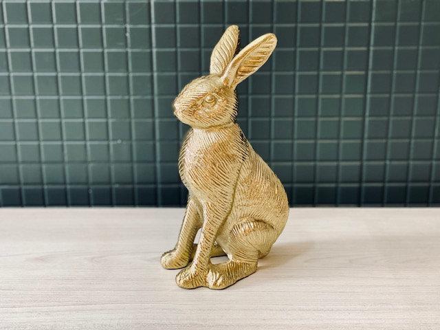 Conejo dorado hierro XL