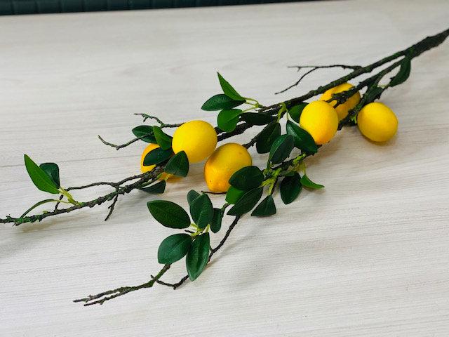 Rama XL limones