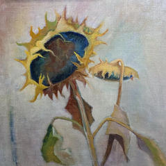 'Subtle Sunflowers' Victoria Broxton Oil on linen board 30x30cm £650