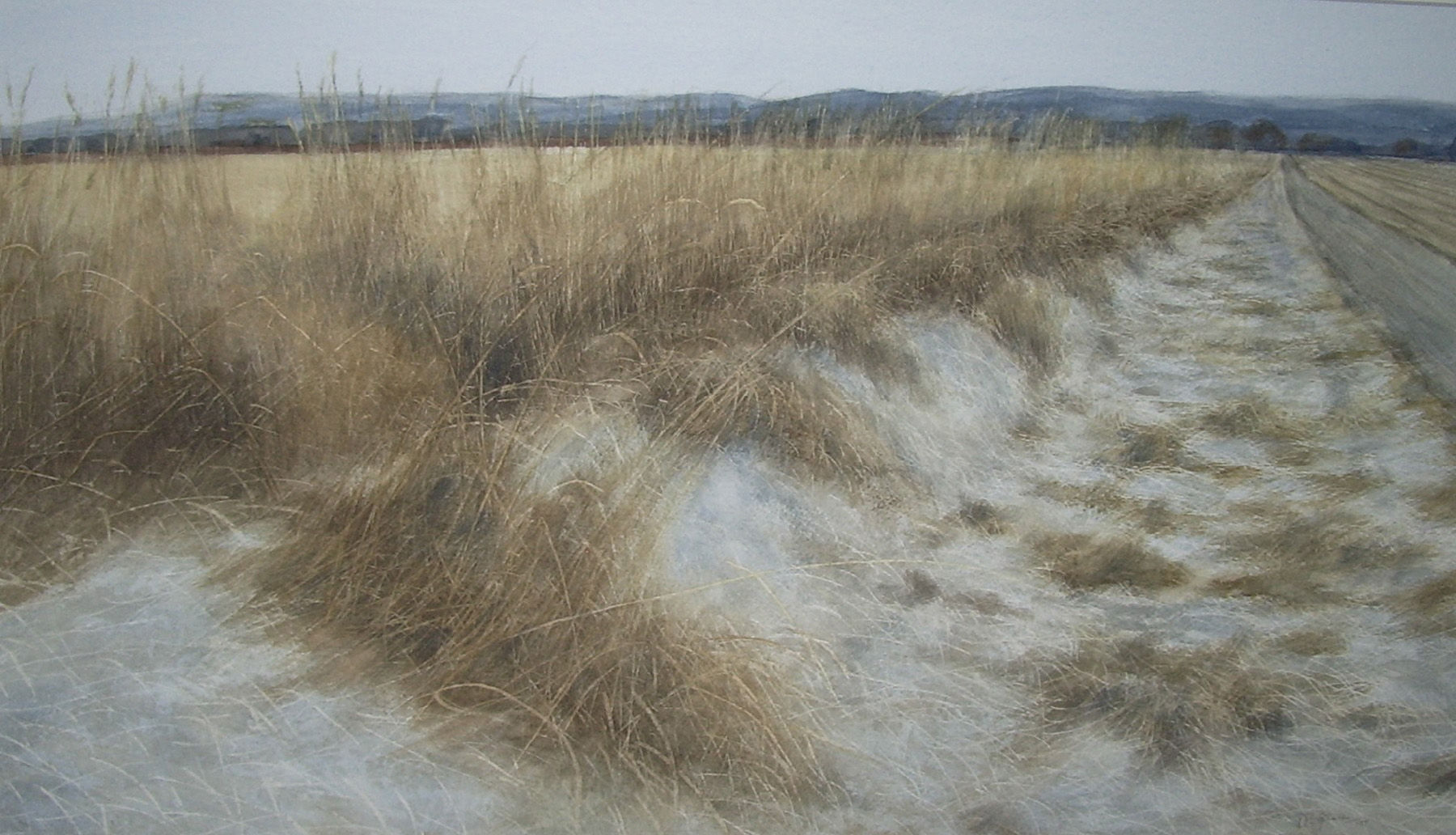 'Midwinter Field Edge, The Mearns' David E Johnstone RSW Watercolour 66x39cm £1250