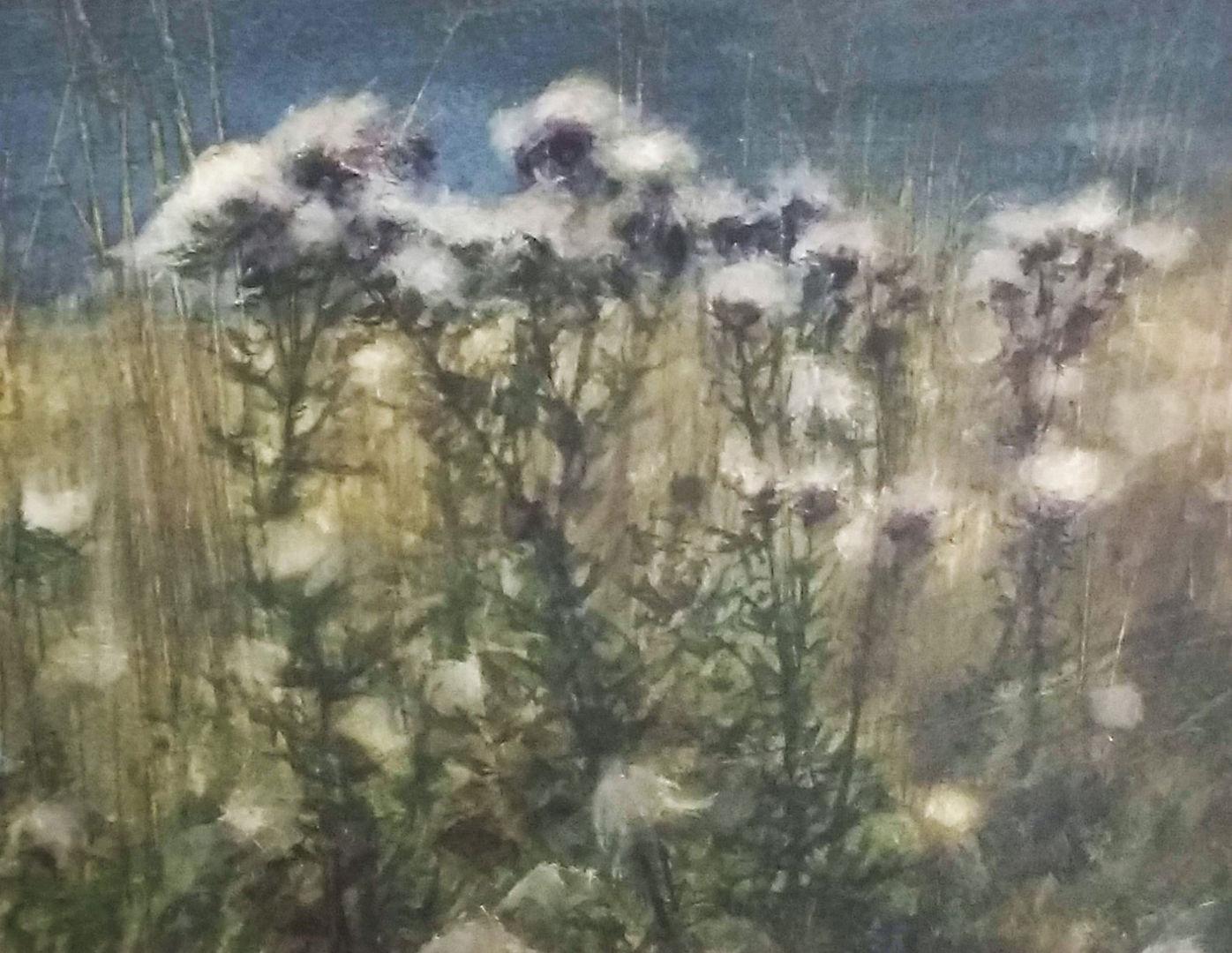 'Thistledown at Dusk' David E Johnstone RSW Watercolour 25x19cm £475