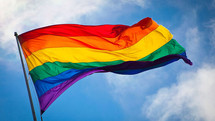 PRIDE in our NZ Workplaces