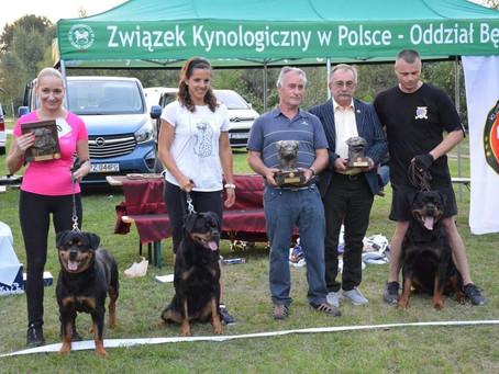Polish Rottweiler Club Show 13.09.2020