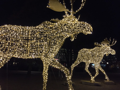 Where Is LBM Heading This Holiday Season? Hopefully, to a Brighter Business Model