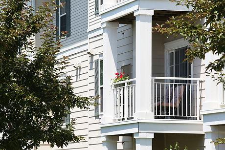 Balcony flowers.jpg