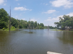 The cove off the boat ramp...