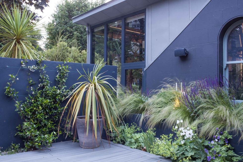 Grey rendered walls with lush green planting