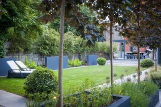 Contemporary garden with rectangular lawn