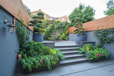 Black basalt paving and living wall.jpg
