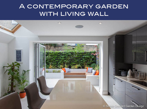 Urban garden living wall