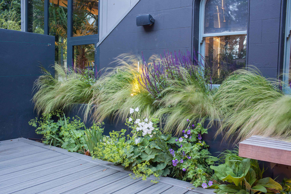 Lush planting with grey deck and grey walls