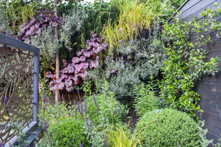 Living wall in garden