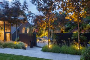 Magical garden at night