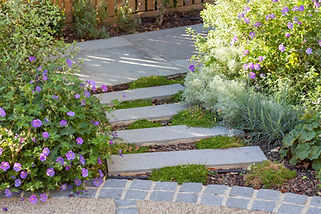 Plank stepping stones with groundcover p