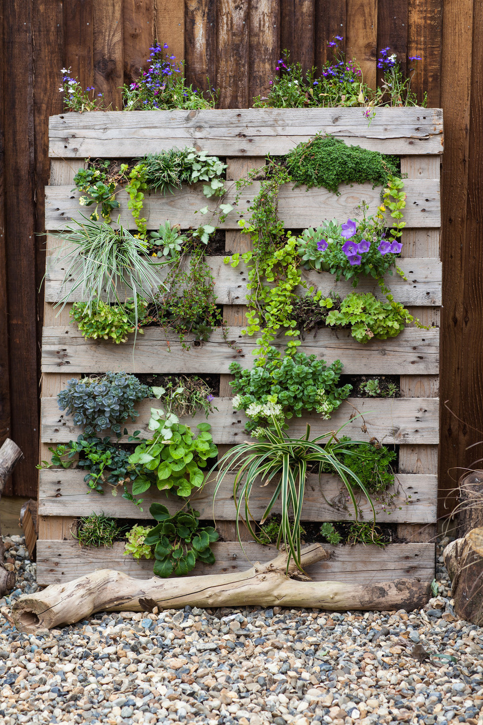Upcycled pallet planter by Simon Orchard Garden Design