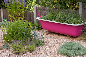 Bath tub planter in garden.jpg