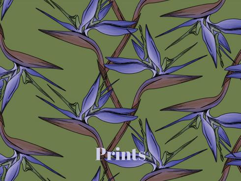Carina Rixner - Graphics, Prints, Allover Prints, Drucke.p