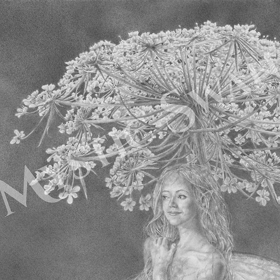 """Parasol"" Faerie and Queen Anne's Lace Giclee Print"