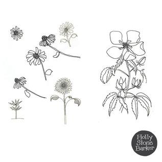 Sketchflowers2.jpg