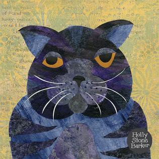 new grumpy cat.jpg