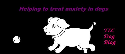 Helping to treat anxiety in dogs