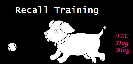 Recall Training