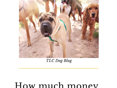 How much money can you make as a dog walker?