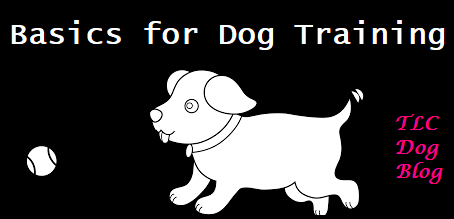 Basics for all dog training