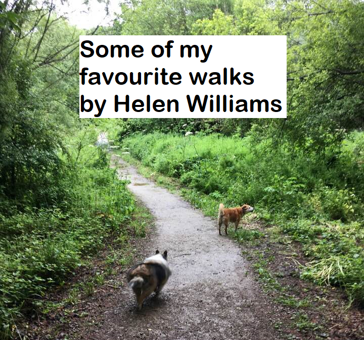 Some of my favourite walks