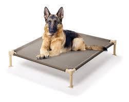 Elavated dog bed