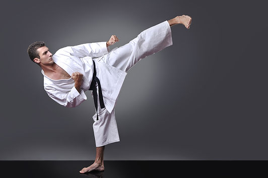 Seigo-sei Shotokan Karate  SSK, Glas