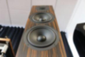 Home audio stereo hifi speakers