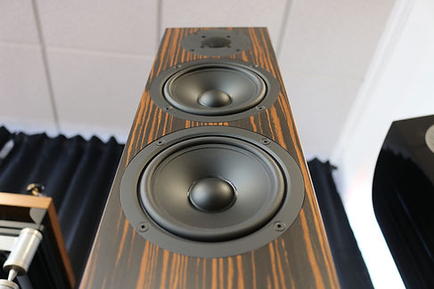 Home audio stereo hifi speakers