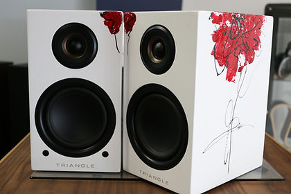 home audio stereo speakers