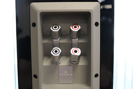 Home audio stereo Triangle hifi speakers