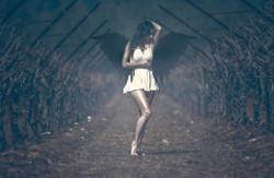 Wings of dawn_Mod_ Tiki Dafna