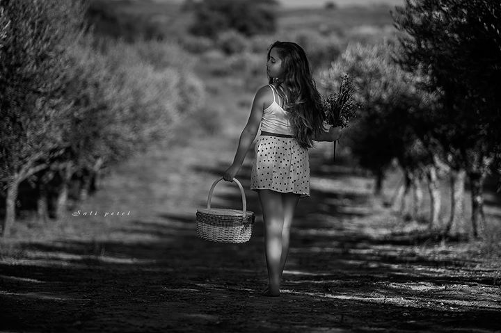 Facebook - Young spirit at the olive groves