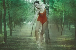 Facebook - Dance with trees Mod: Tiki Dafna MU : Or Cohen Assi: יואל הרוש