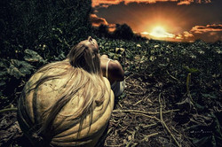 The sinking of the pumpkin dreams__#הפרוייקט