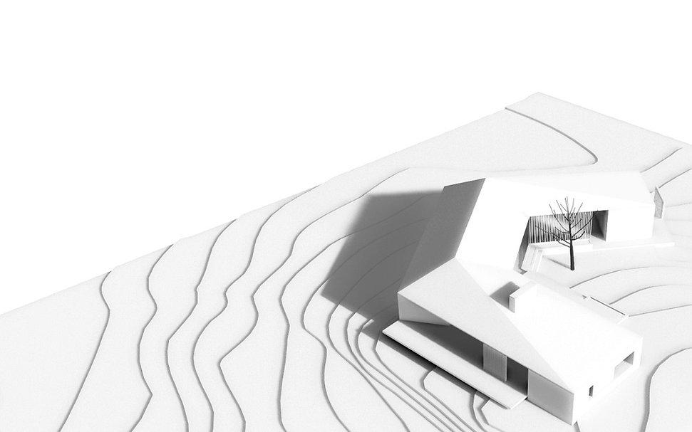 WHITE MODEL PS_edited.jpg