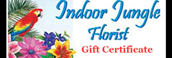 Indoor Jungle Gift Certificate 25