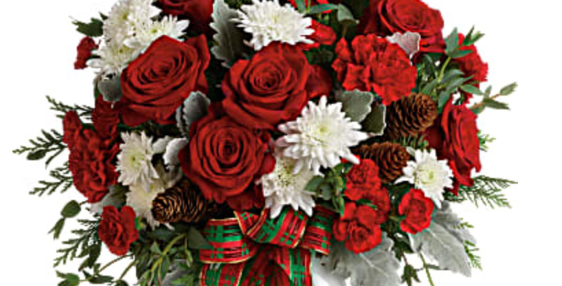 Holiday Shine by Teleflora