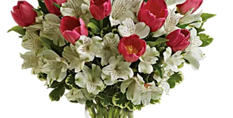 Tulip Ruse