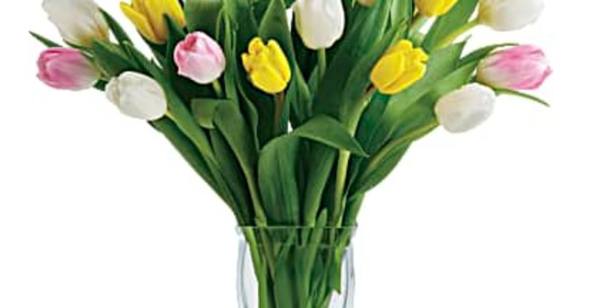 Teleflora Tulip Treasure