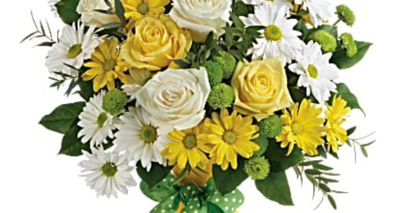 Teleflora Daisies and Dots