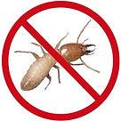 Termite Solutions Cross Pest Control Cross Pest Controls