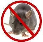 Cross Pest Control Rodent Services Cross Pest Controls