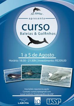 Curso de Baleias e Golfinhos 2016