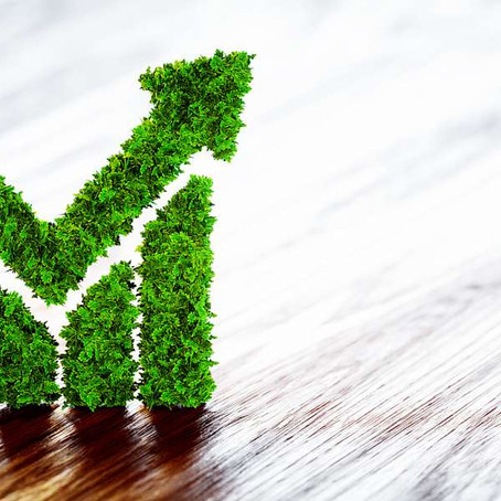 Business Sustainability: How Companies Execute Plans to Lower Carbon Emissions