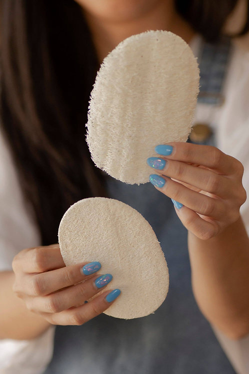 Biodegradable Eco-Sponges for Dish Washing (3 Pack) by NO TOX LIFE